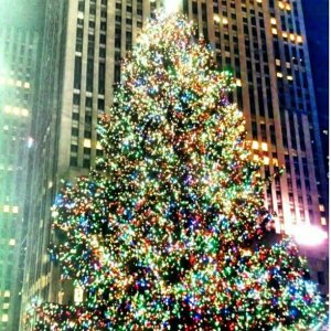 The 2012 Rockefeller Christmas tree makes me feel like a happy 5 year old.