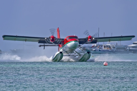 For a seaplane, I'll consider giving up my singleton status this summer.