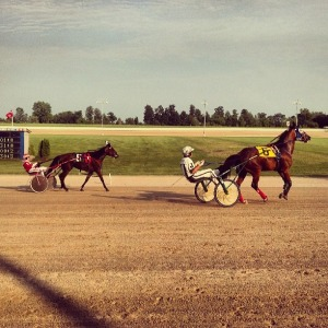 A snapshot from my day at the races